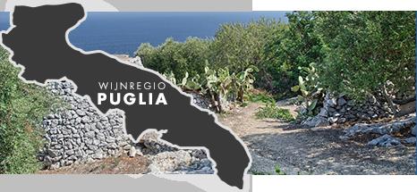 DU_FACEBOOK_0008_Puglia